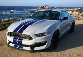 shelby,форд,2015,gt350,мустанг,mustang,ford